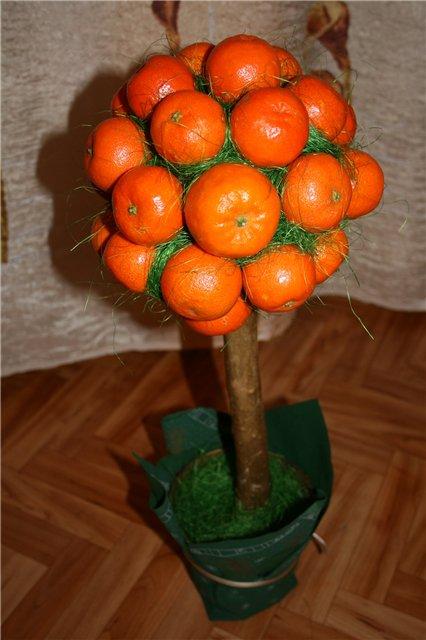 Декоративное мандариновое дерево своими руками 84